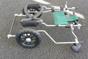Rear- wheel walker with full mesh front harness and turning caster wheels